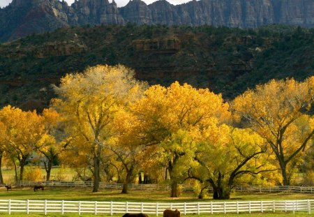 Autumn Mountainscape and Pasture - mountains, autumn, pasture, fall, nature, trees