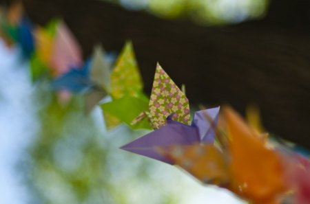 Colorful Origami - origami, purple, orange, color, paper