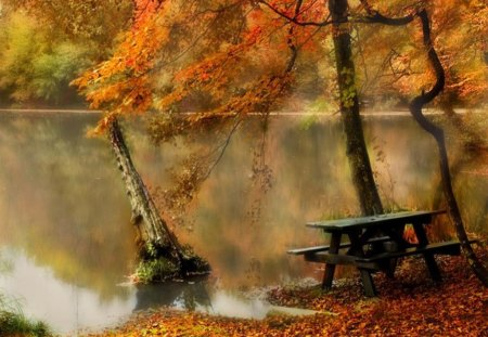 autumn lake - lake, mirror, nature, bench, autumn