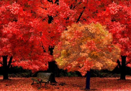 autumn park - red, forest, bench, autumn