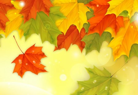 Autumn Shining Fresh - new, green, dew drops, orange, deew, season, fall, autumn, yellow, leaves, fresh, maple, wind, gold, breeze