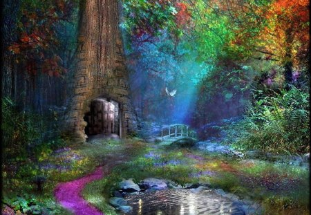Door to....... - pond, wonderland, colors, path, entrance, forest, magic, door