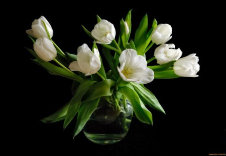 Pure SPRING♥ - arrangement, green, flowers, spring, pure, wonderful, tulips, white, love, nature