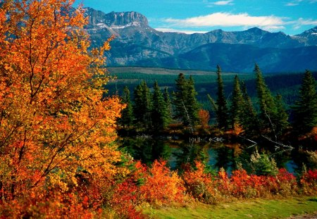 JASPER NATIONAL PARK - rocky mountains, jasper national park, north america, attractions, alberta, canada, geography