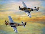 P51 - Mustang Twins