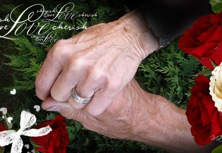 Together Forever - wrinkles, ribbon, tree, hands, grandfather, ring, love, cedar, collage, lovers, hearts, bow, grandmother, red roses, father, mother, marriage