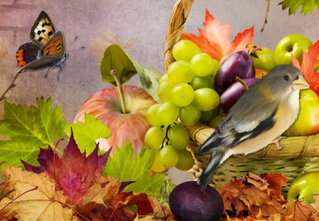 Fun Fall Fruit - plenty, basket, grapes, bright, fall, autumn, plums, butterfly, fruit, collage, harvest, papillon, apples, food, leaves, prunes, bird, brick wall