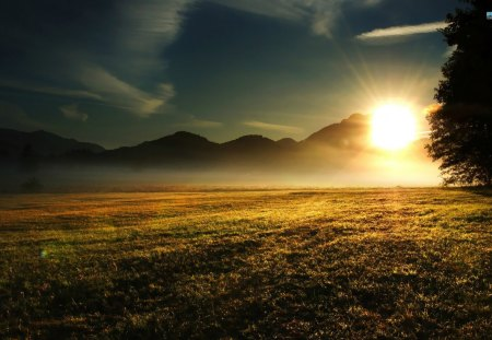 Sunrise Over The Meadow - sunrise, grass, clouds, sky