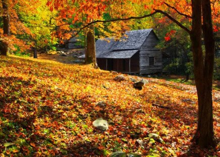 autumn cabin wallpaper desktop - photo #14