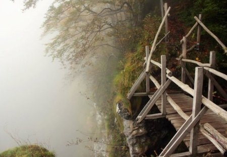 Have a Walk - wood, beautiful, photogrpahy, tree, bulgaria, fall, autumn, leaves, foggy, bridge, wooden, photo, fog, mountain, forest, nature