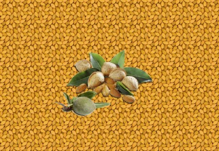 Almonds - Amandes - green, collage, fruits, almond, brown, nature