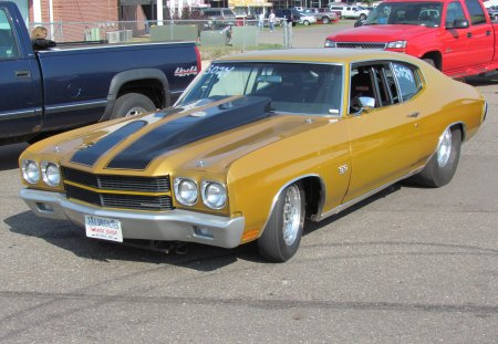 1970 Chevrolet Chevelle SS drag car - 70, muscle car, gm, chevrolet, fast, 1970, race car, classic, chevelle, drag car, gold, chevy