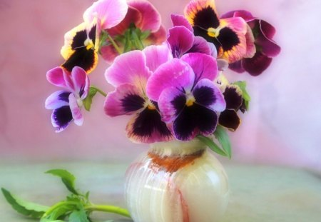 Violets in vase - flowers, delicate, beautiful, colorful, leaf, colors, pretty, lovely, harmony, violets, room, table, leaves, nice, still life