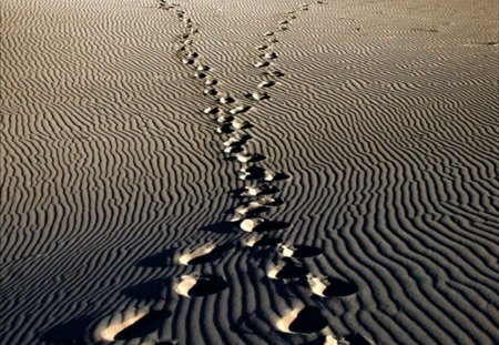 footsteps in the sand - meaning, sense, collage, sand, footsteps
