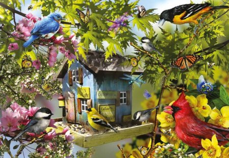 Bird house - beautiful, colorful, painting, colors, pretty, lovely, tree, branches, birds, leaves, nice, house, family
