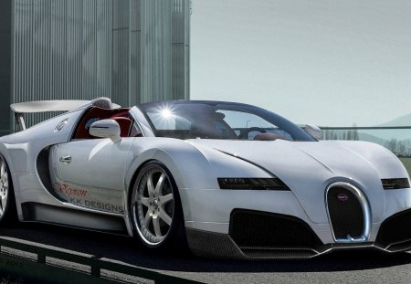 NEW Bugatti Veyron 2013  Fast Cars Wallpapers and Images