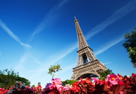 Eiffel Tower - splendor, flowers, paris, beautiful, pretty, view, beauty, eiffel, architecture, eiffel tower, france, tower, sky, lovely, clouds, nature, peaceful