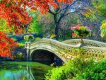 Bridge To Autumn