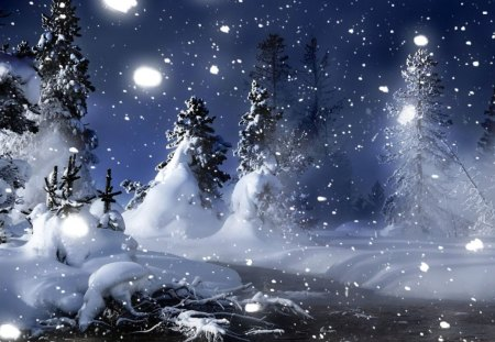 A Magical Winter Night