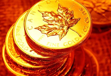 Gold Coins - fantastic, amazing, beautiful, great, adorable, abstract, pretty, nice, awesome, photo, money, cins, gold, picture, gold coins, outstanding, marvellous, wonderful, canada, super, treasure, wallpaper, stunning, skyphoenixx1