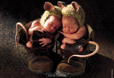 Children by Anne Geddes - children, baby, shoes, cute, photo, anne geddes, animal