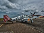 P51 Mustang - Betty Jane