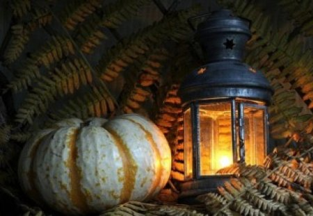 Lantern and a Pumpkin - photography, still life, lantern, pumpkin