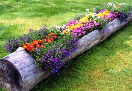 Flower Garden Wallpaper Background flower log garden - flowers & nature background wallpapers on
