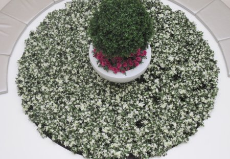 Island full of flowers at the Mall - green, flowers, photography, white, red