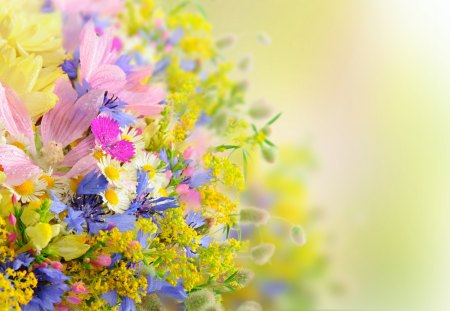 Beautiful Flowers - petals, summer time, photography, cg, nature, lovely, bouquet, drop, drops, yellow flowers, yellow, colors, pink, pink flowers, beauty, summer, colorful, daisy, beautiful, flowers, colorful flowers, pretty, daisies, artistic