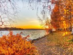 Beautiful Autumn Scene