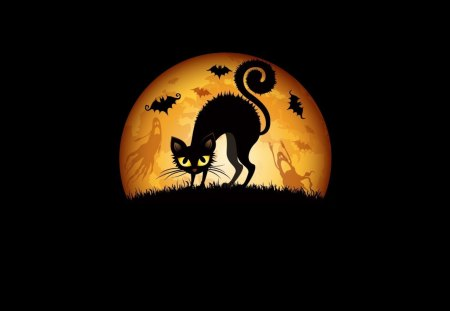 Halloween kitty (meaww) - dark, 1080p, halloween, black, moon, cat, holiday, kitty