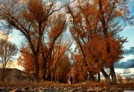 Scenic Armenia - leaves, landscape, trees, building, sky, nature, autumn, armenia