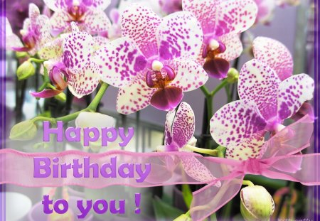 ♥     ❀♥❀ Orchid Birthday Card ❀♥❀  ♥ - birthday, flowers, flower, purple, nature, orchids, bow