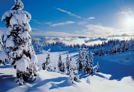 winter mountain winter amp nature background wallpapers on