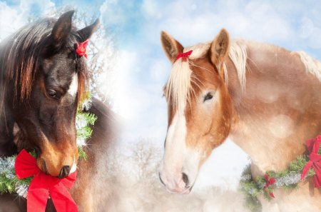 Christmas Horses - spruce, feliz navidad, tinsels, christmas, ribbons, farm, horses, winter, sweet, ranch, fir