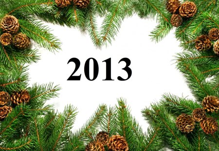 Happy New Year - holidays, white space, 2013, cone, pine tree-branch, happy new year