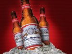 BUDWEISER ON ICE