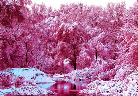 pink winter winter amp nature background wallpapers on