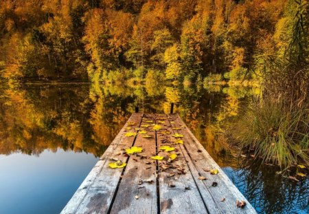 Dock On A Lake In Autumn Lakes Nature Background Wallpapers On