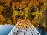 dock on a lake in autumn