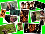 epic hunger games collage
