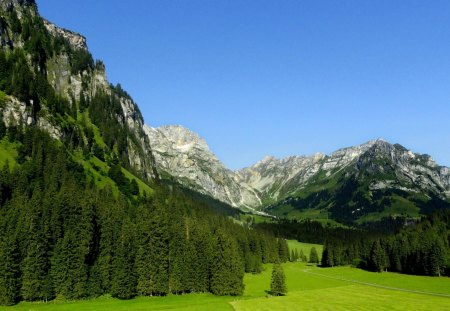 engelberg - cool, mountain, trees, nature