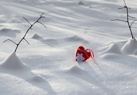 Heard shaped snow   Heart art, Heart shapes, Heart in nature   Hearts In Nature Winter