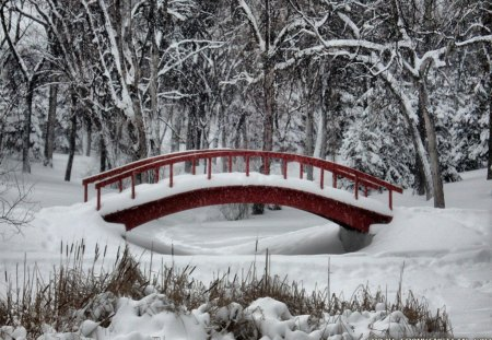 Winter Wonderland - winter forest, winter wonderland, winter bridge, winter scene
