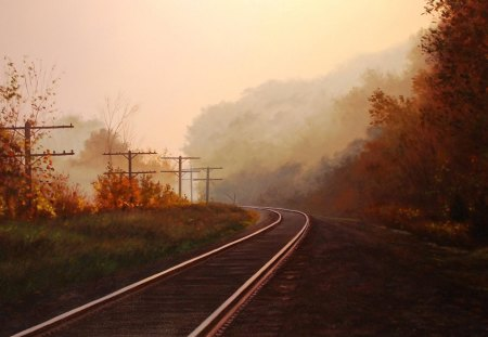 Autumn and the railroad - sun, tree, railroad, autumn