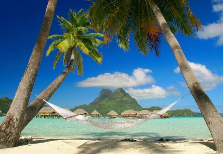 Hammock On The Beach - tropical, paradi, lovely palms and thatch huts, bora bora, tropics, beach, cooll, descanso en hamaca, palm trees, french, polynesia, ef, hammock, french polynesia, ocean