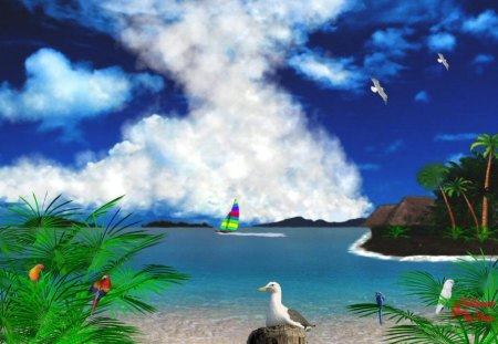 Tropical Wonder - Parrots, Tropical, Sailing, Oceans, Tropics, Birds, Water, Beaches