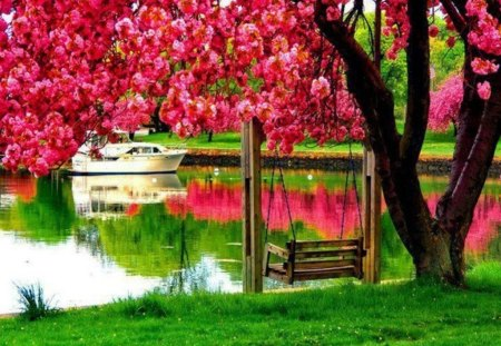 Beautiful Park - Other & Nature Background Wallpapers on ...