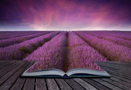 The Book of Nature - Flowers & Nature Background Wallpapers on ...